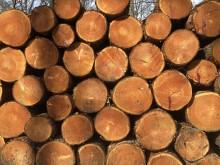 Støtteordning til afskrevne biomasseværker er sat i kraft