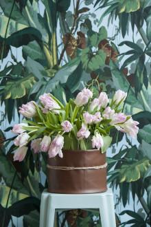 Växttrender 2017 – med fokus på tulpaner