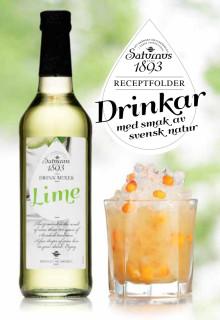 Receptfolder - Drinkar med smak av svensk natur