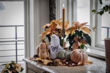 Tips inför Halloween och Alla helgons dag