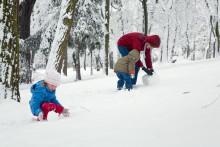 Hur kommer Barnallergiåret att uppmärksammas av landstinget i Gävleborg?