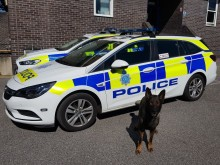 Dog named Goose locates drink-driver in Pulborough