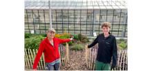 FÖJ-ler legt neuen Kräutergarten für die Hephata-Gärtnerei an – Noch freie Plätze für den Freiwilligendienst bei der Hephata Diakonie