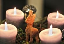 Advent, Advent – Vorsicht, es brennt!