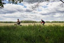 Brandenburg per Rad erkunden