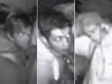 Do you recognise these garden centre intruders?