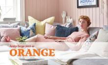 Hva mener fargeekspertene om valget av Orange som Årets Farge 2015?