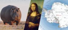 13 fun facts vi lærte av en kunstig intelligens