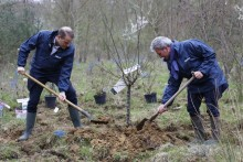 Panalpina France plante 2 036 arbres pour compenser ses émissions de CO2, en collaboration avec Reforest Action