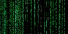 Ny studie - så här utvecklar företag sin digitala affärsmodell