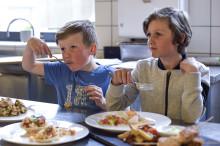 Ny undersøkelse: Bare 2 av 10 barn spiser nok fisk