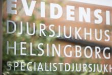 Sveriges äldsta djursjukhus fyller 60 år