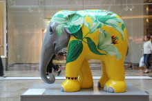 Creating an elephant in the room