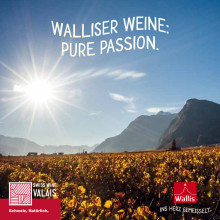 Walliser Weine: Pure Passion.