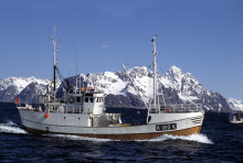 New record for Norwegian seafood exports in first quarter 2015