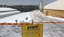 Insatsen på fågelinfluensadrabbad gård går in i ny fas