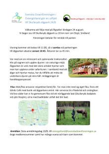 Älgsafari Östergötland