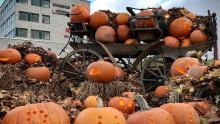 Pumpalandet i Huskvarna plockas bort i förtid