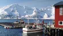 Levendelagret torsk løfter eksporten
