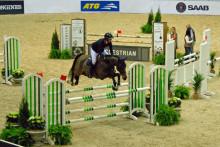 Unga svenska hästar inviger årets tävlingar