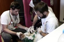 Medelhavet: europeiska regeringar måste sätta människors liv före politik