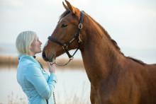 Ansök om stipendier till forskning om djurhälsa