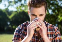 Pollenallergi? Så överlever du säsongen