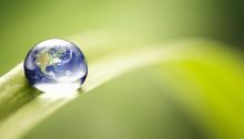 Chr. Hansen kåret som verdens mest bæredygtige virksomhed
