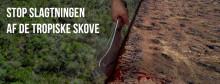 Kampagne Lancering: Stop slagtningen af de tropiske skove