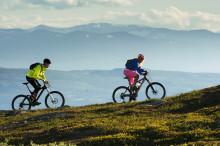 Så ska Åre öka omsättningen på cykling med 20 miljoner