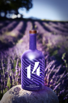 Lavendel ger smak åt årets BLOSSA