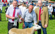 Northumberland County Show 2019