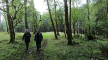 Art & Ecology - internationell foto- och filmfestival