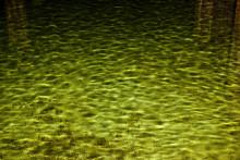 Ny SVU-rapport: Dimensioneringstal för vattenförbrukning