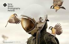 In Italia la mostra dei Sony World Photography Awards  alla Villa Reale di Monza dal 13 settembre al 3 novembre
