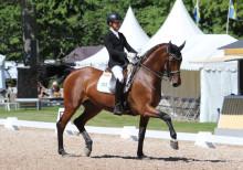 Landskamp i dressyr under Elmia Scandinavian Horse Show