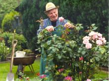 Altersvorsorge: nicht nur auf einen Weg setzen