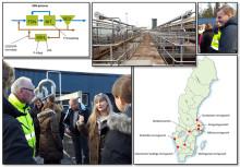 SVU-rapport om sidoströmshydrolys och biologisk fosforavskiljning på svenska avloppsreningsverk  (avlopp och miljö)
