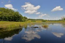 Fascinerende billeder fra dansk naturperle