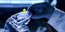 Framgångsrikt rådgivande möte med Läkemedelsverket om utformningen av Idogens kliniska studie