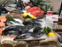 Makrellen løftes frem i Sørøst-Asia