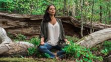 The Harvard Medical School rekommenderar: Yoga, meditation och andningsövningar kan stilla oro och ångest