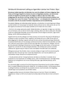 Världsunik klimatsmart odling av tigerräkor startas hos Findus i Bjuv