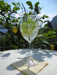 Hugo - ein Kultgetränk aus Naturns erobert Europa