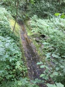Skötseln av dagvattendammar förbättras för att säkra vattenkvaliteten i vattendrag