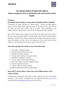 Buglife-järjestön ja Sonyn raportti (englanninkielinen)