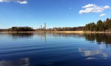Allt lägre dioxinhalter utanför massaindustrier