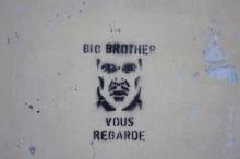 Forskarbloggen: Big Brother vous regarde