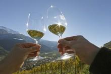 Weinwoche die 19te mit Joachim Nischler