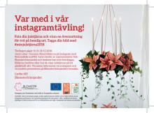 Instagramtävling